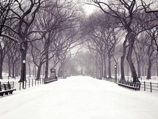 Výsledok vyhľadávania obrázkov pre dopyt gif png téli képek