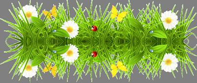 Акция на цветы в спб